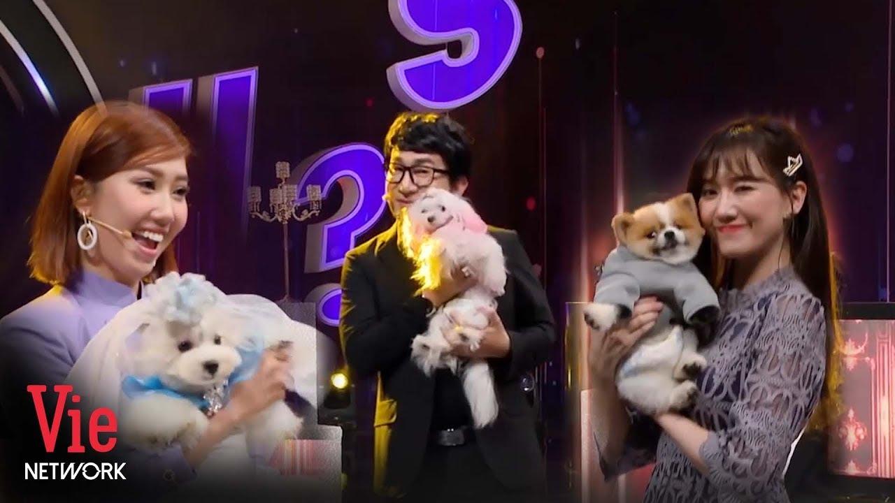 Hari Won, Thúy Ngân mê mẩn những chú cún siêu đáng yêu | Ai Là Số 1